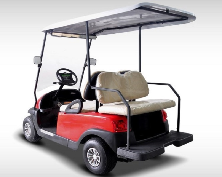 2016 Hisun Pulse Golf Cart rear view