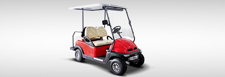 2016 Hisun Pulse Golf Cart